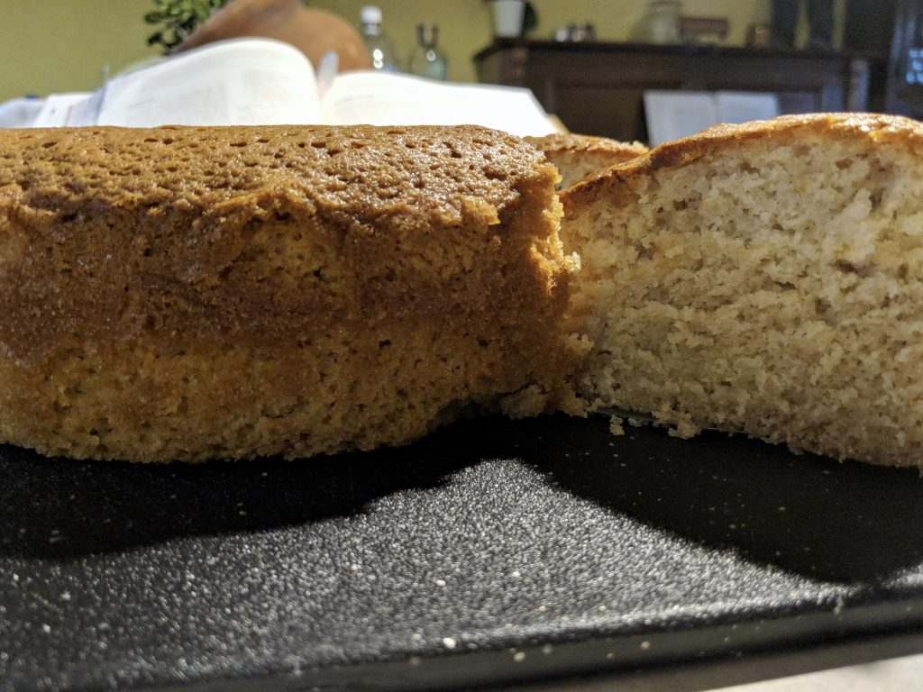 Meal 16 - Ginger Cake